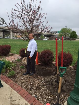 Tree planting April 29