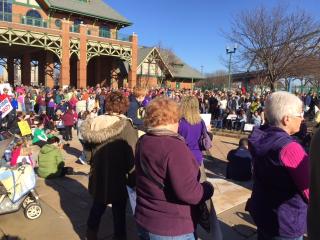 Jan 21 rally crowd